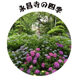 永昌寺の四季